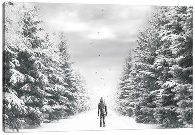 The Path Canvas Art Print