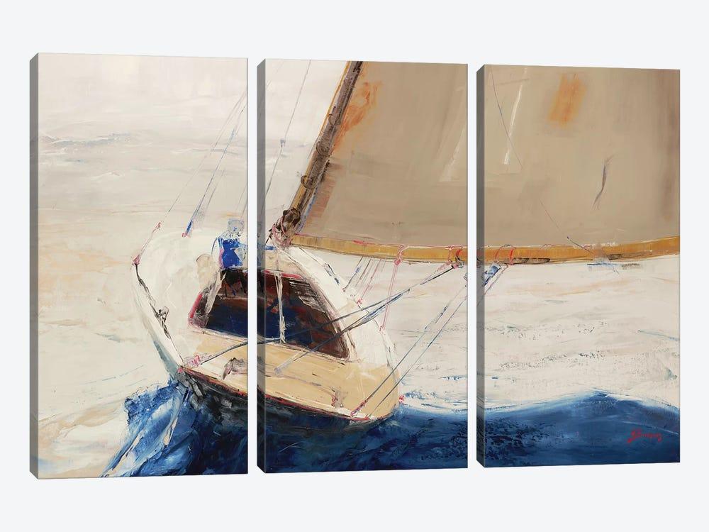 Single-Handed by John Burrows 3-piece Canvas Artwork
