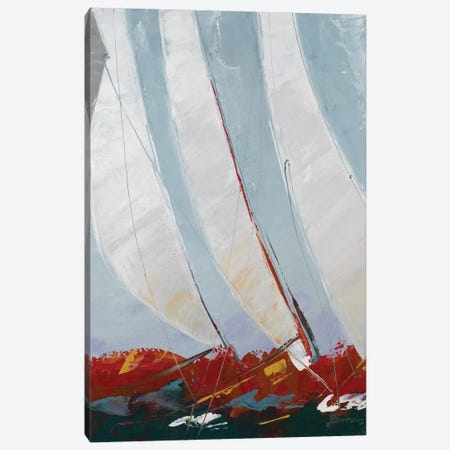 Racing the Wind Canvas Print #BRW22} by John Burrows Canvas Wall Art