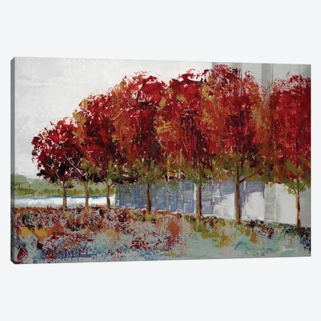 Fall at Soba Commone Canvas Print #BRW28} by John Burrows Canvas Wall Art