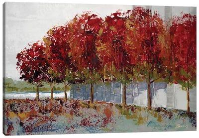 Fall at Soba Commone Canvas Art Print