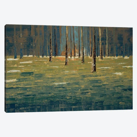 Forest Twilight Canvas Print #BRW29} by John Burrows Canvas Art
