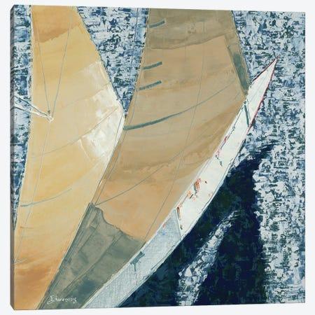 Aerial Canvas Print #BRW2} by John Burrows Canvas Artwork