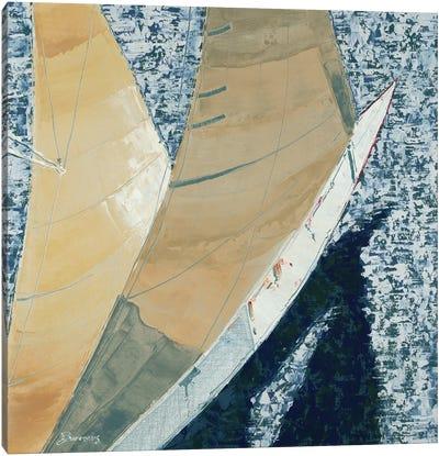 Aerial Canvas Art Print