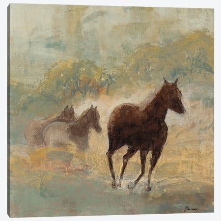 Like The Wind Canvas Print #BRW33} by John Burrows Canvas Art Print