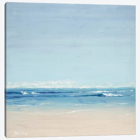 Seascape Canvas Print #BRW36} by John Burrows Canvas Wall Art