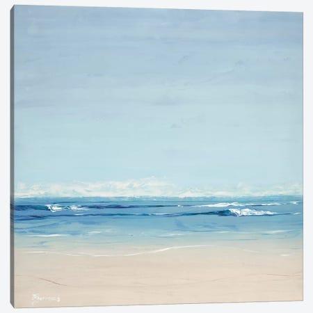 Seascape Canvas Print #BRW36} by John Burrows Canvas Wall Art