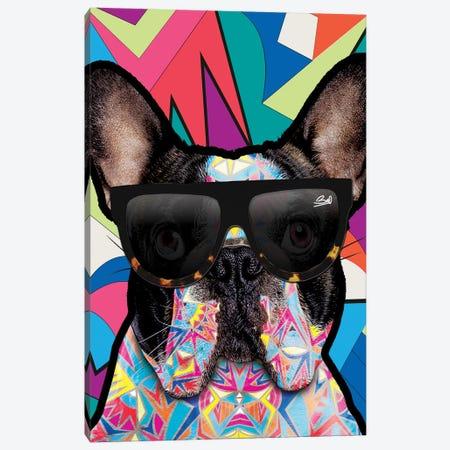 Animal Starz Bulldog Français 3-Piece Canvas #BSA13} by Baro Sarre Canvas Wall Art