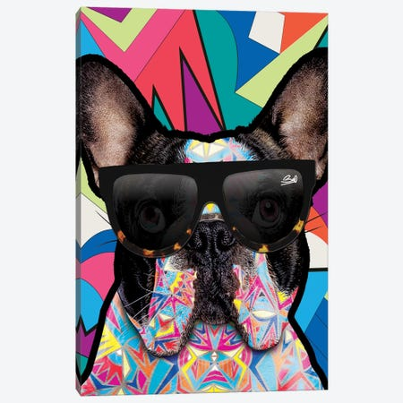 Animal Starz Bulldog Français Canvas Print #BSA13} by Baro Sarre Canvas Wall Art
