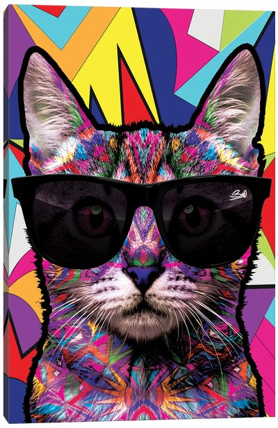 Animal Starz Chat Canvas Art Print
