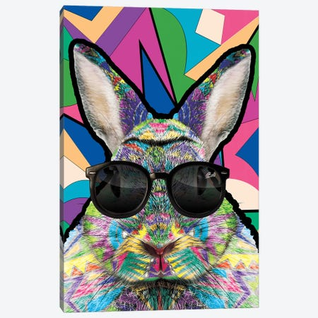 Animal Starz Lapin Canvas Print #BSA15} by Baro Sarre Canvas Art Print