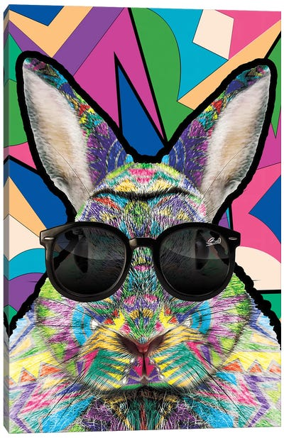 Animal Starz Lapin Canvas Art Print