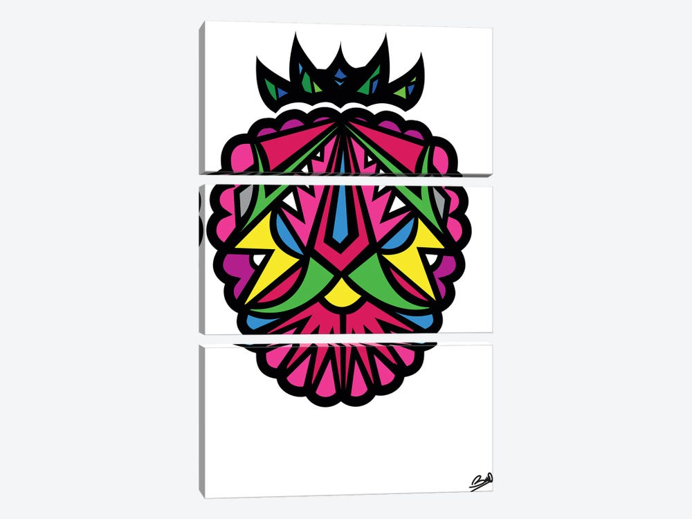 Framboise by Baro Sarre 3-piece Canvas Print