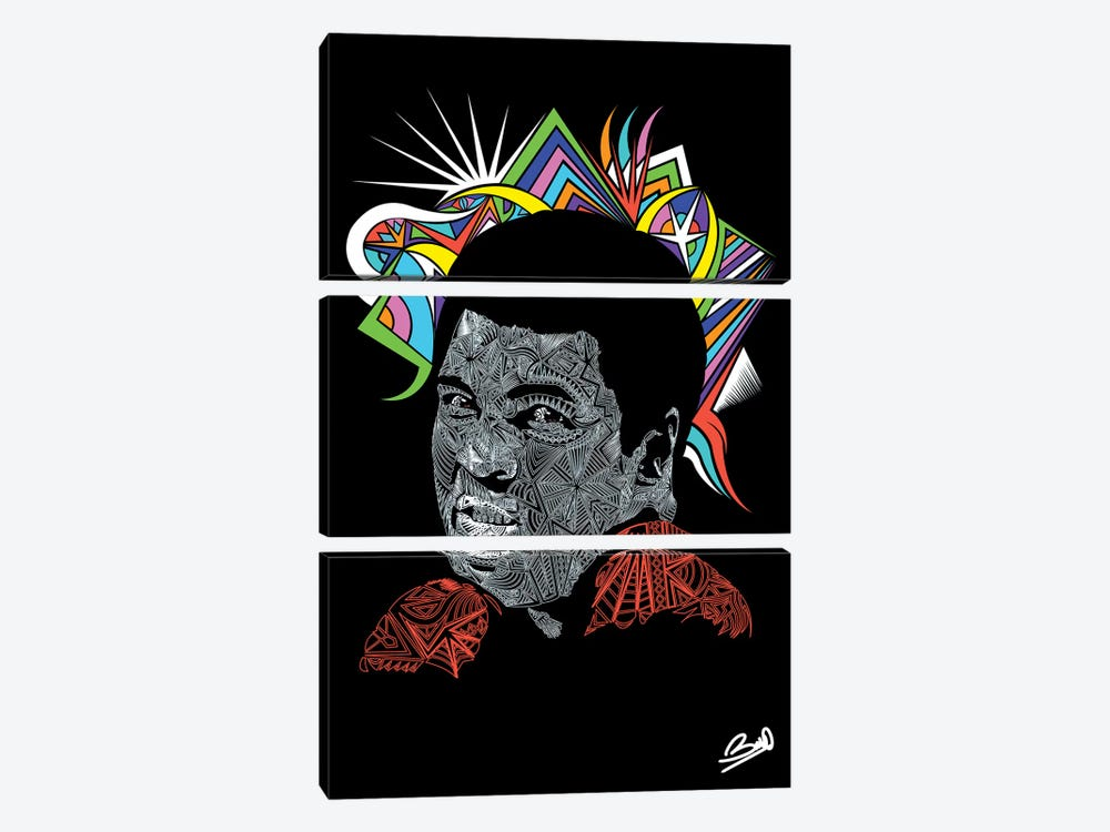 Ali by Baro Sarré 3-piece Canvas Art Print