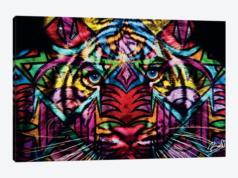 Tigre by Baro Sarre 1-piece Canvas Art