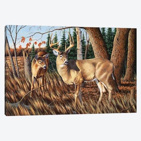 Two Deer Canvas Print #BSD15} by Bob Schmidt Canvas Wall Art