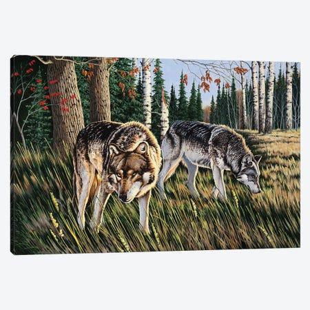 Wolves Canvas Print #BSD16} by Bob Schmidt Canvas Art