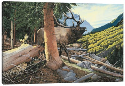 Elk In Forest Canvas Art Print