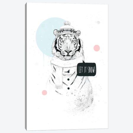 Snow Tiger Canvas Print #BSI103} by Balazs Solti Canvas Art Print