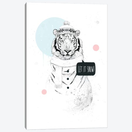 Snow Tiger Canvas Print #BSI103} by Balazs Solti Canvas Art Print