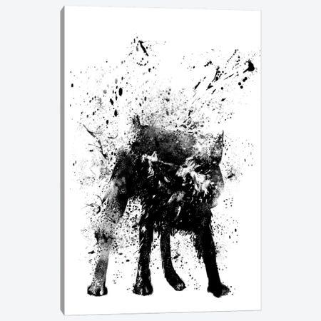 Wet Dog Canvas Print #BSI10} by Balazs Solti Canvas Artwork
