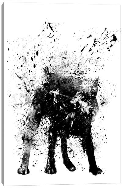 Wet Dog Canvas Art Print