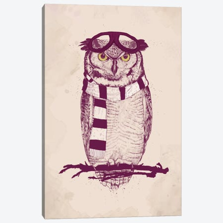 The Aviator Canvas Print #BSI110} by Balazs Solti Canvas Art