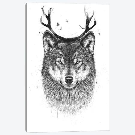 I'm Your Deer Canvas Print #BSI115} by Balazs Solti Canvas Art Print
