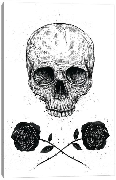 Skull 'n' Roses Canvas Art Print