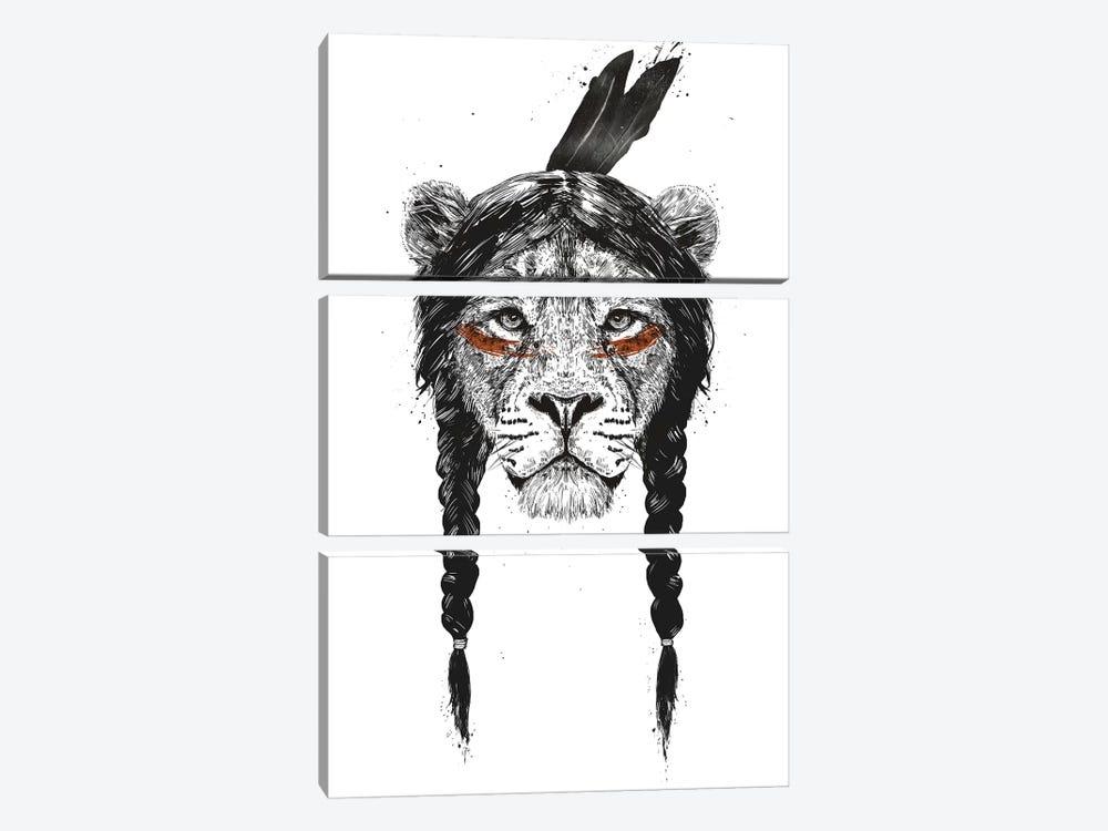Warrior Lion by Balazs Solti 3-piece Canvas Print