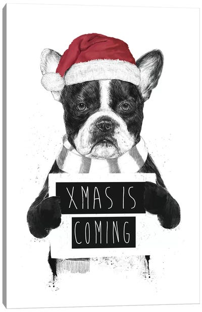 Xmas Is Coming Canvas Art Print