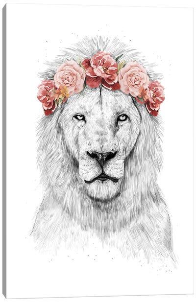 Festival Lion Canvas Print #BSI126