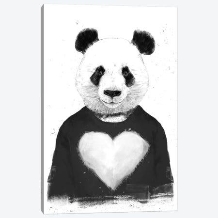 Lovely Panda Canvas Print #BSI128} by Balazs Solti Canvas Print
