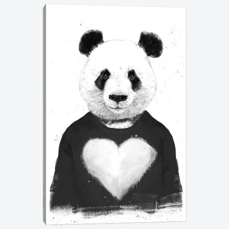 Lovely Panda Canvas Print #BSI128} by Balazs Solti Canvas Print