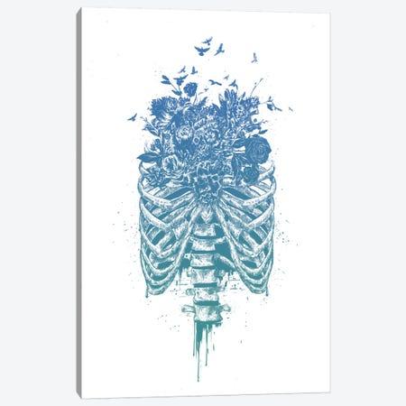 New Life Canvas Print #BSI129} by Balazs Solti Canvas Art Print