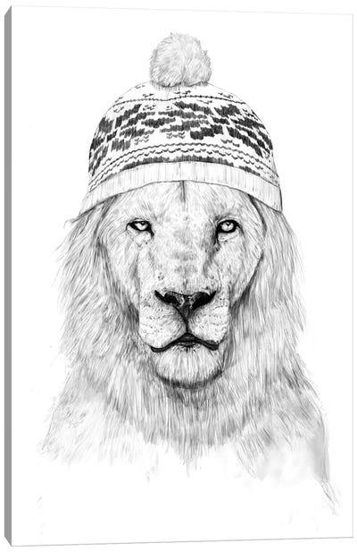 Winter Is Coming II Canvas Print #BSI12