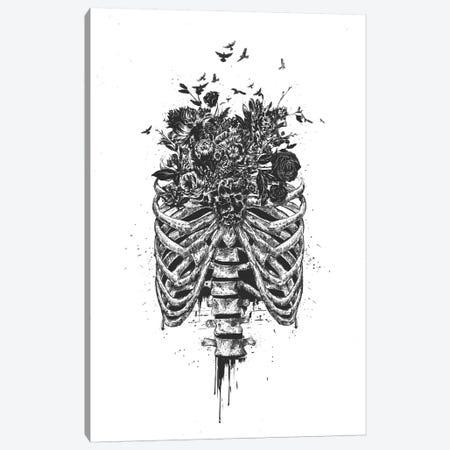 New Life Black Canvas Print #BSI130} by Balazs Solti Canvas Art