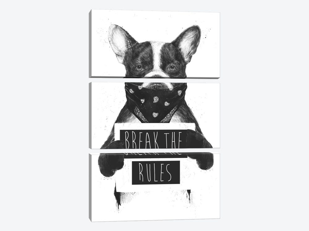 Rebel Dog by Balazs Solti 3-piece Canvas Print