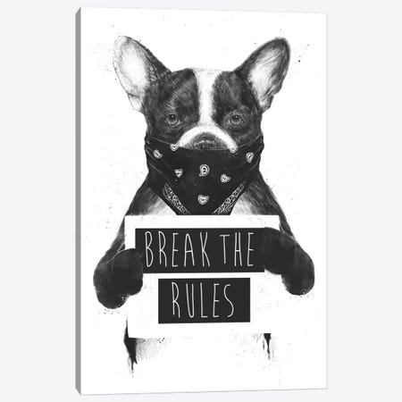 Rebel Dog Canvas Print #BSI131} by Balazs Solti Canvas Art