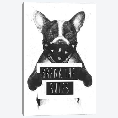 Rebel Dog Canvas Print #BSI131} by Balazs Solti Canvas Art