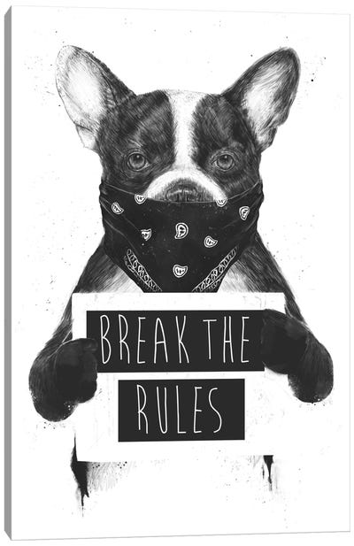 Rebel Dog Canvas Art Print
