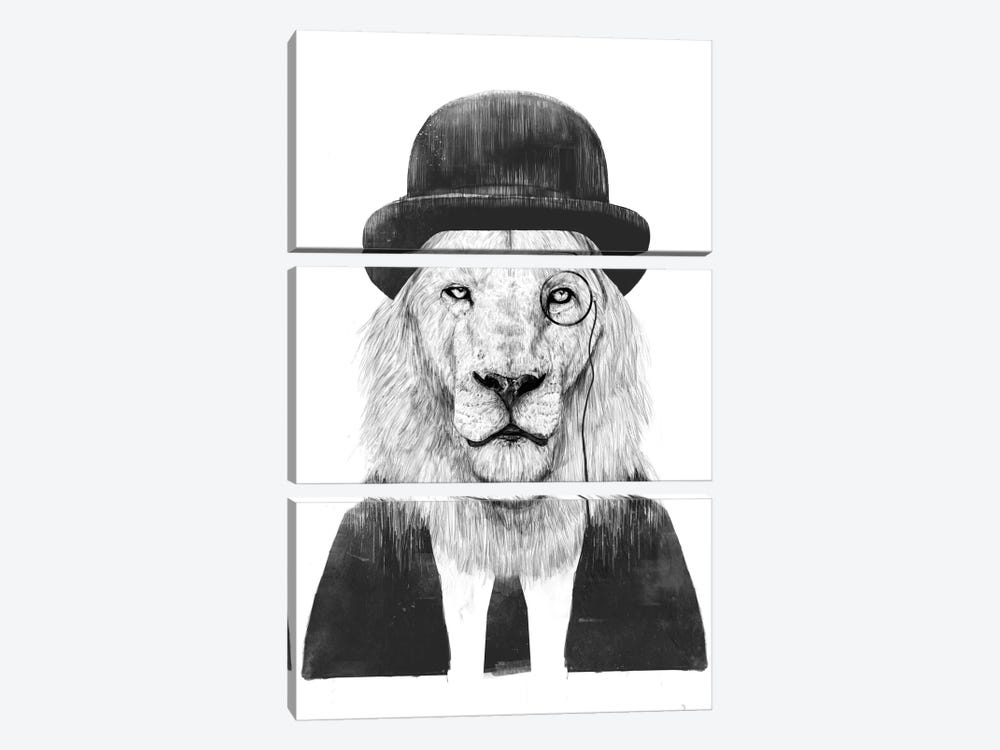 Sir Lion by Balazs Solti 3-piece Canvas Artwork