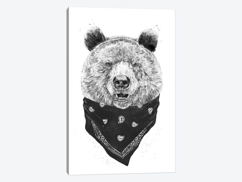 Wild Bear by Balazs Solti 1-piece Canvas Print