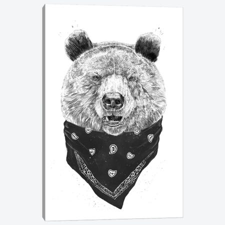 Wild Bear Canvas Print #BSI135} by Balazs Solti Canvas Art Print