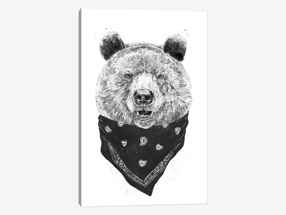 Wild Bear by Balazs Solti 1-piece Canvas Print