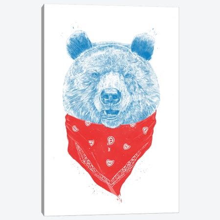 Wild Bear Canvas Print #BSI150} by Balazs Solti Canvas Artwork