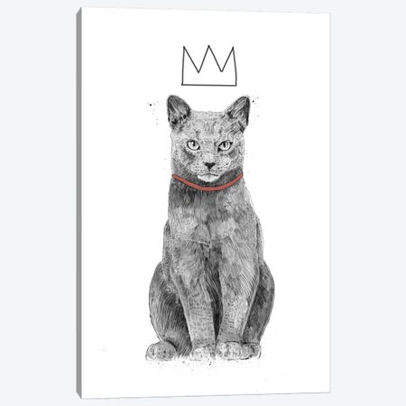 King Of Everything Canvas Print #BSI155} by Balazs Solti Canvas Art Print