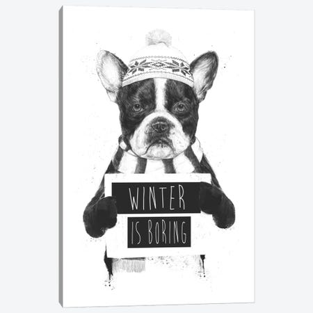 Winter Is Boring Canvas Print #BSI15} by Balazs Solti Canvas Print