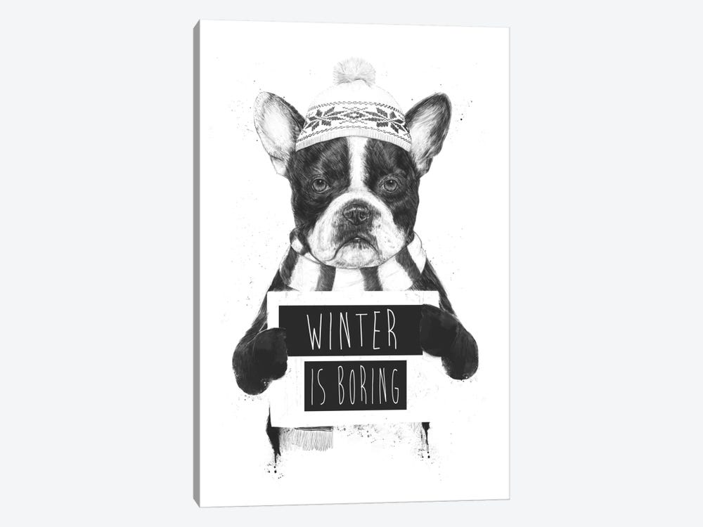 Winter Is Boring by Balazs Solti 1-piece Canvas Art