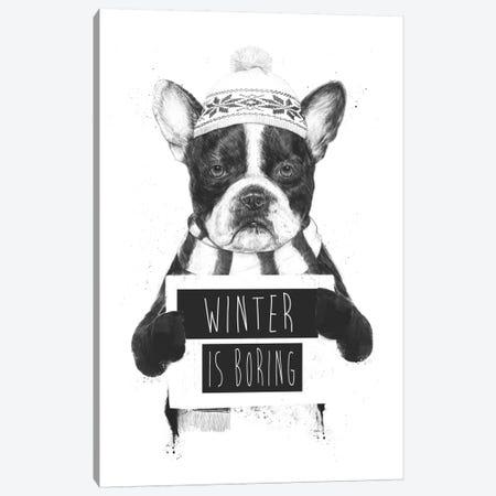 Winter Is Boring Canvas Print #BSI15} by Balazs Solti Canvas Print